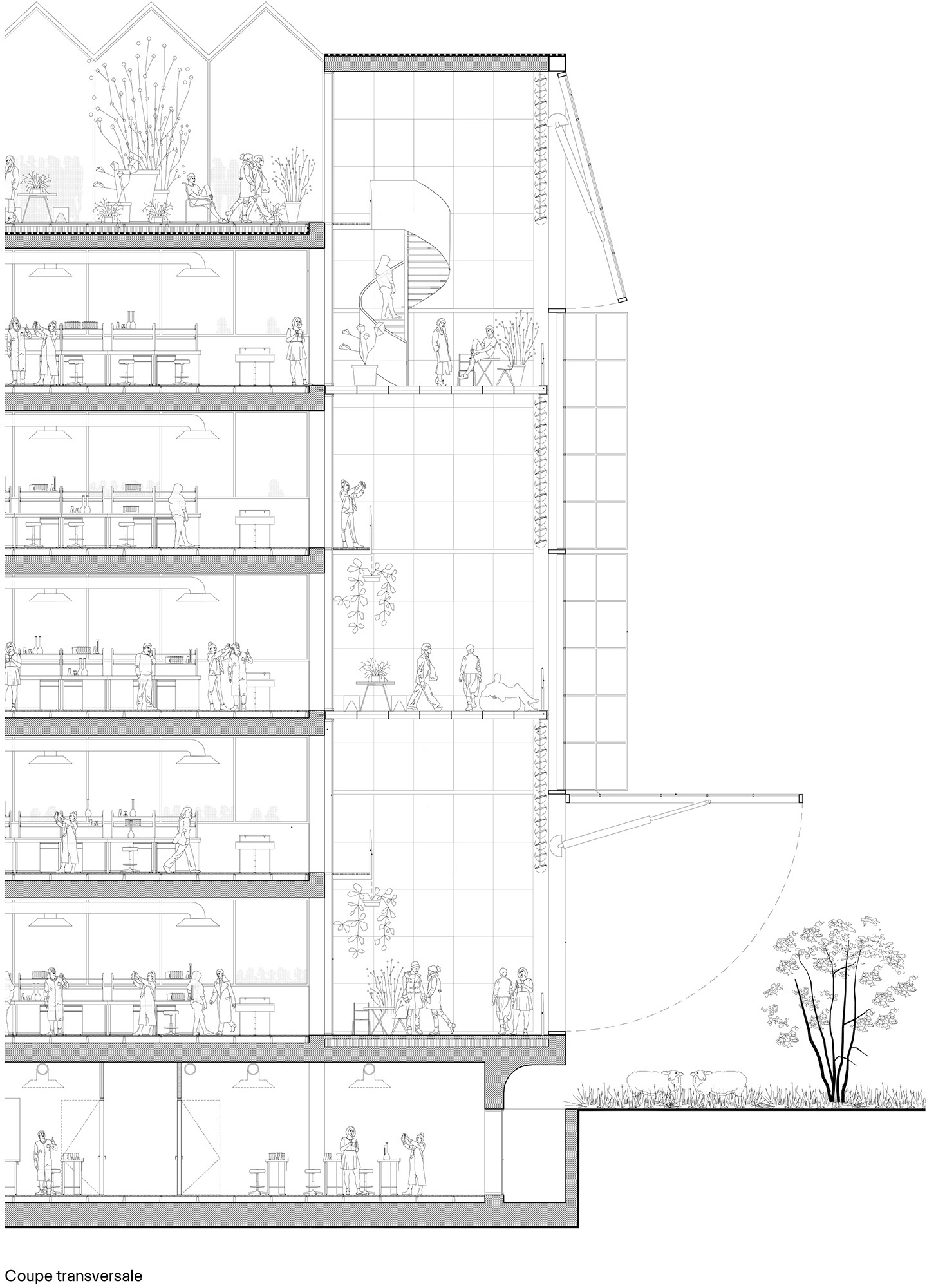 Alucobond Facade Maison